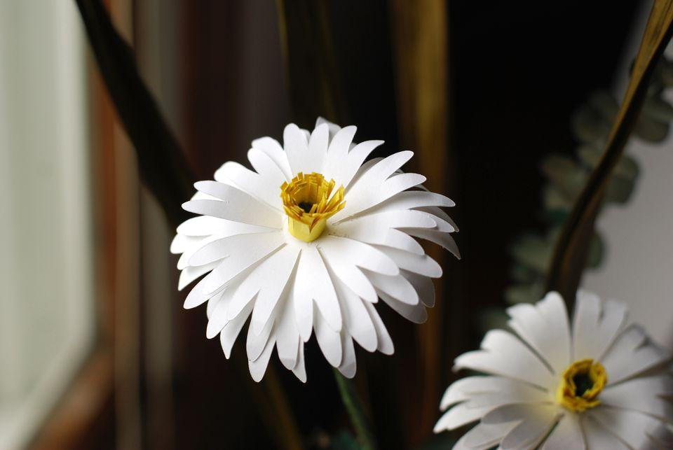 DIY paper daisy