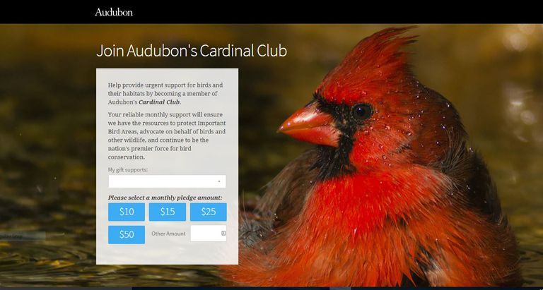 Monthly giving page for the Audubon Society