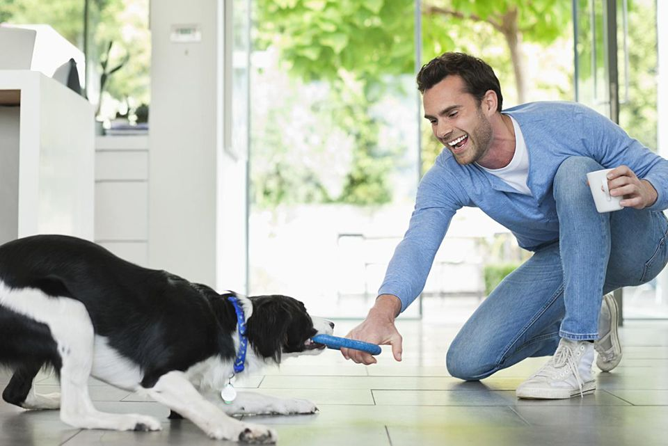 Man playing with dog in kitchen