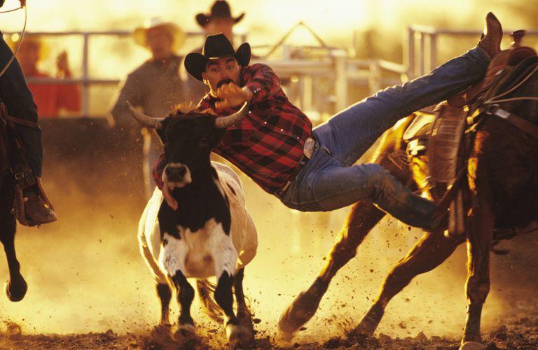 Bull Dogging in Arizona