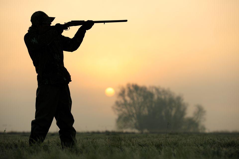 A hunter standing in a field, wielding a shotgun.