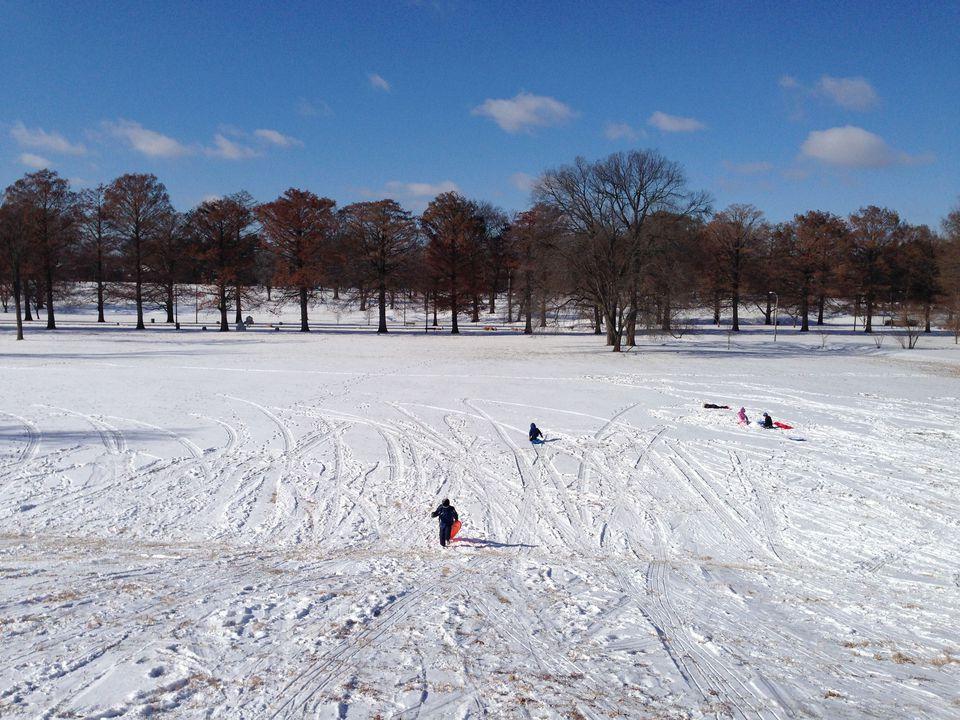sledding-francis-park.jpg