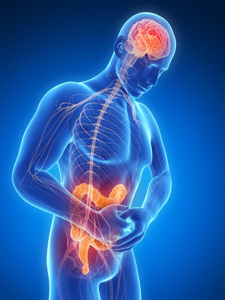 Human intestinal pain, illustration