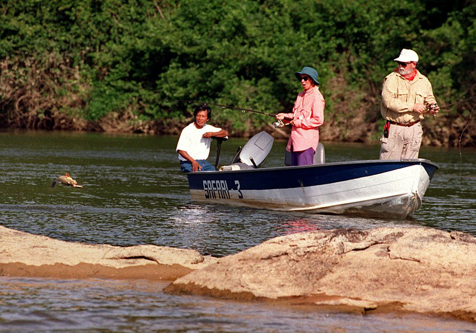 Amazon fishing - Angler fights a peacock bass