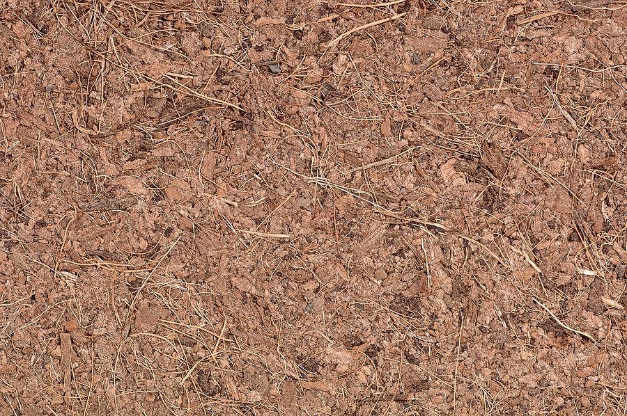natural coir carpeting