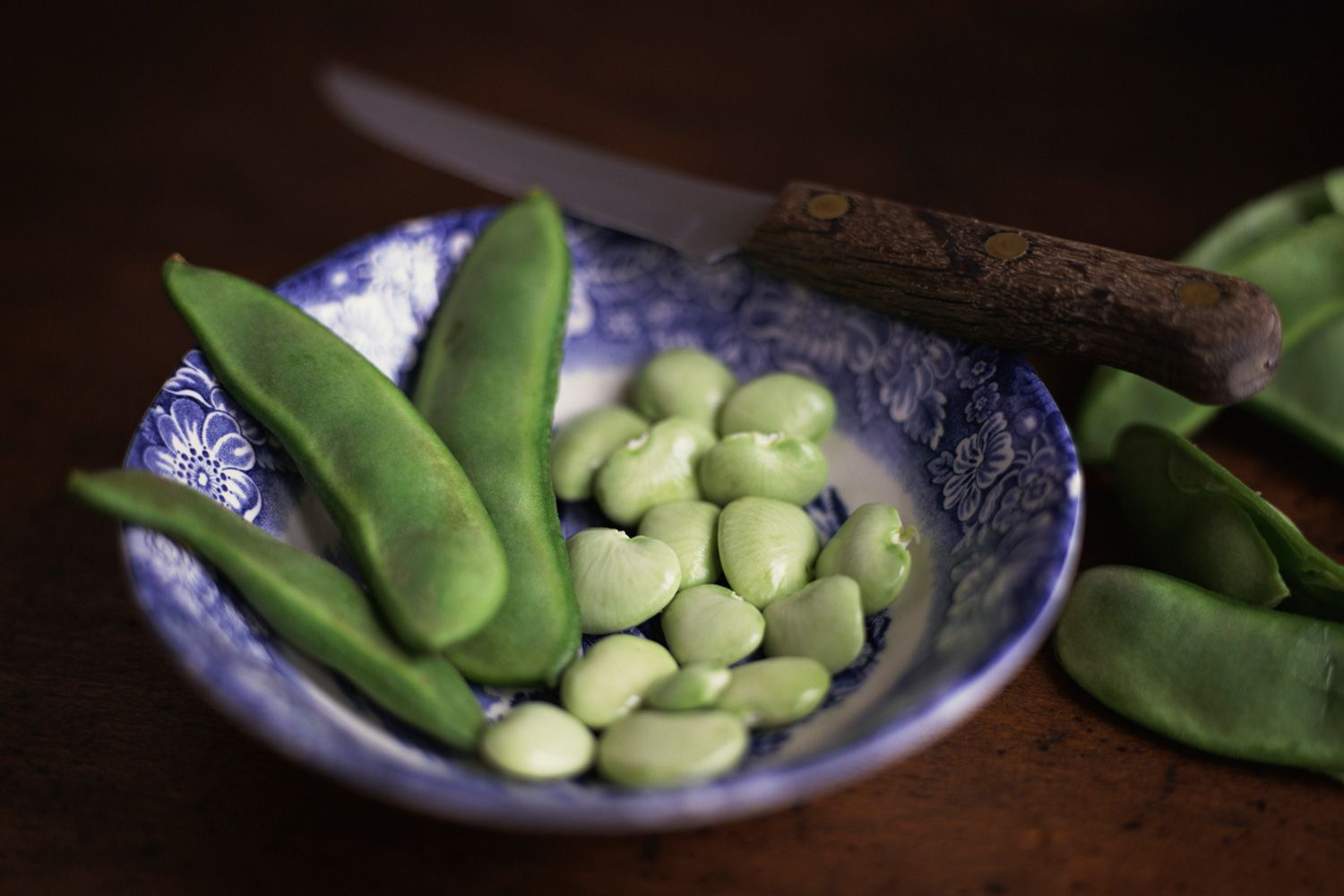Growing Lima Beans In Container Gardens