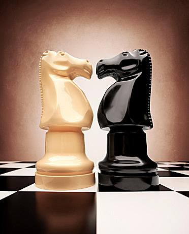 white and black chess knights face off