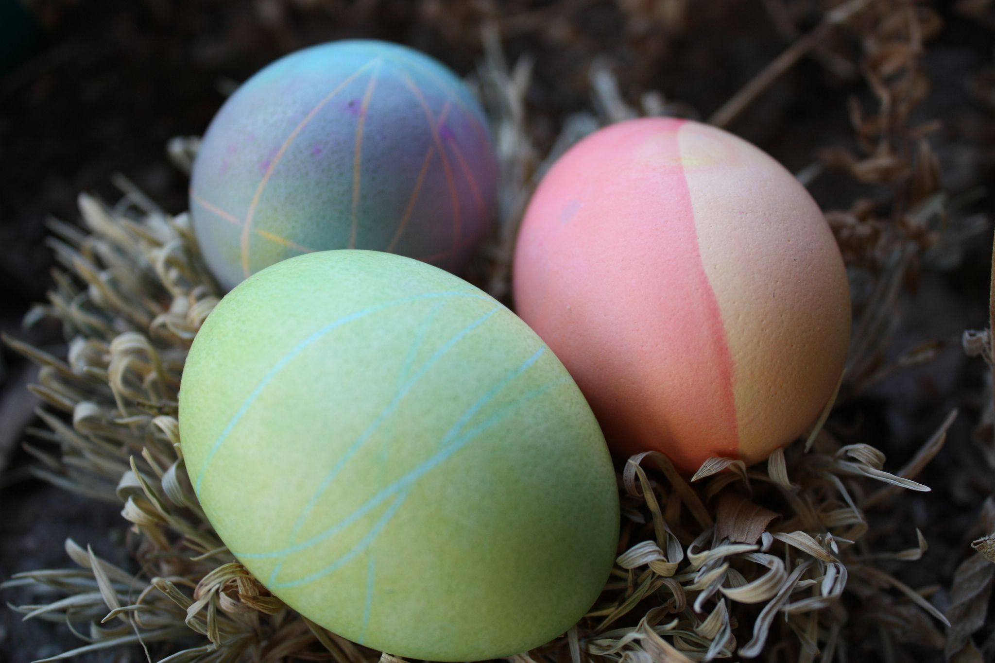 Pictures Of Colored Easter Eggs 85