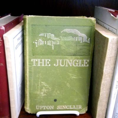 SparkNotes: The Jungle: Study Questions