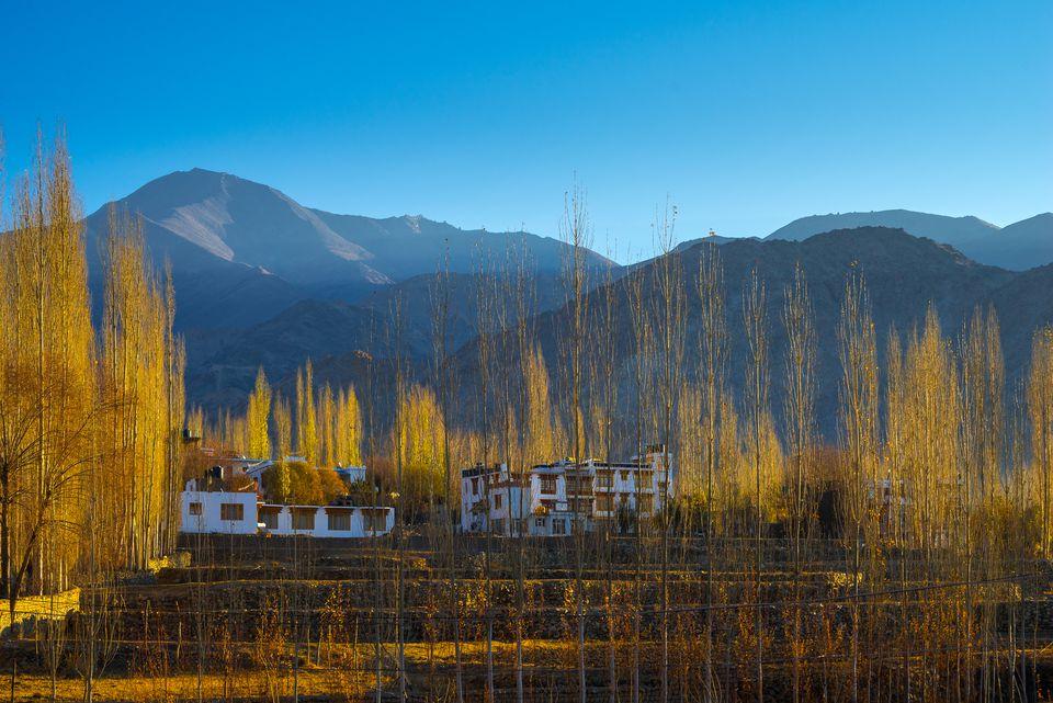 Homes near Leh, Ladakh.