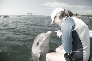 a young woman sitting with a dolphin