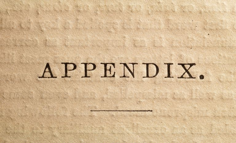 what to include in an appendix