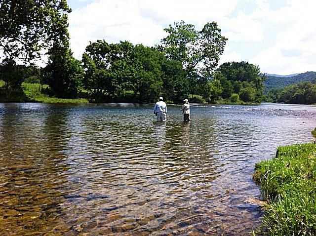 Fly fishing on South Fork Holston River