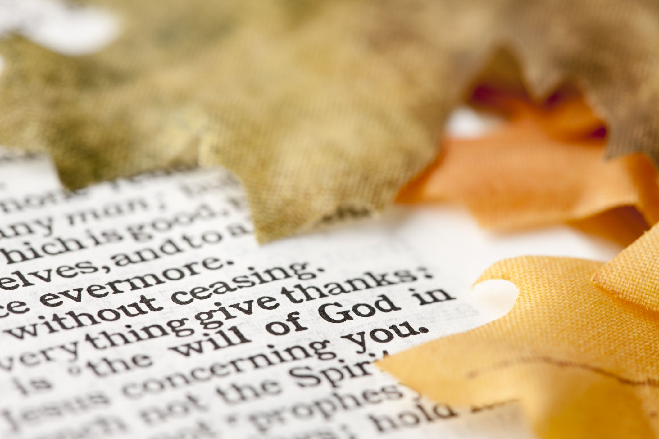 Bible Verses on Hope fer fort and Encouragement