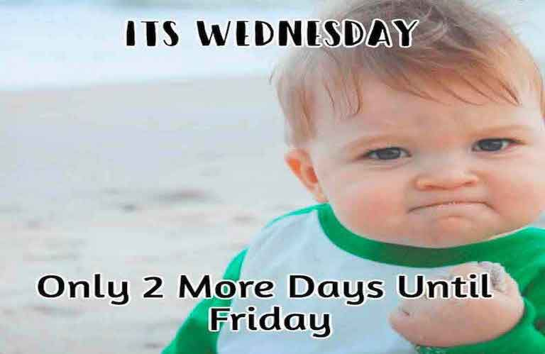 Funny Memes For Wednesday : The perfect wednesday memes
