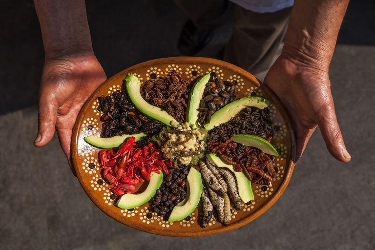 Edible insects prepared by a Mexican chef