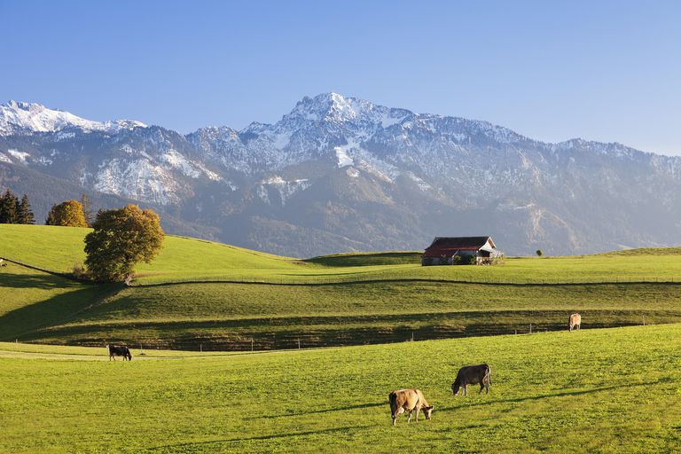 The German origin of the Meyer surname was a name for someone in charge of overseeing a large farm, such as this dairy farm in Fussen, Bavaria, Germany.