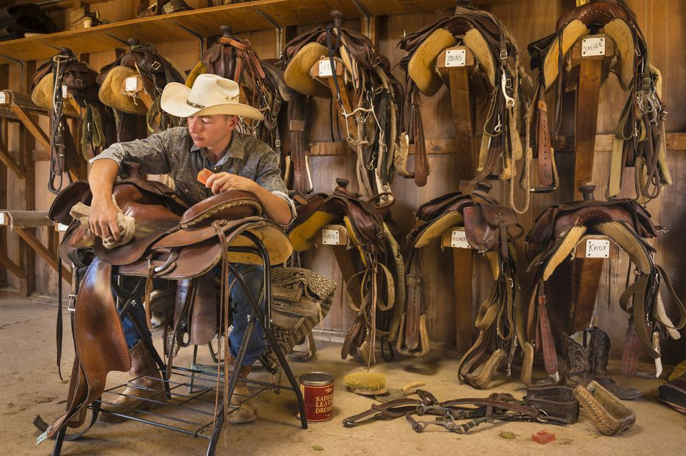Man cleaning leather saddle