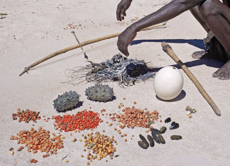 Tool Kit and Food of San Hunter-Gatherer in Etosha National Park