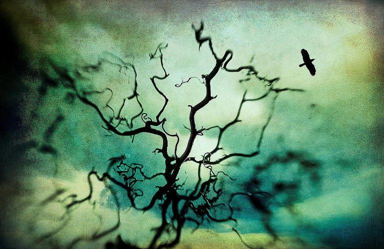 sound bibles free halloween sounds - Free Halloween Sounds Mp3