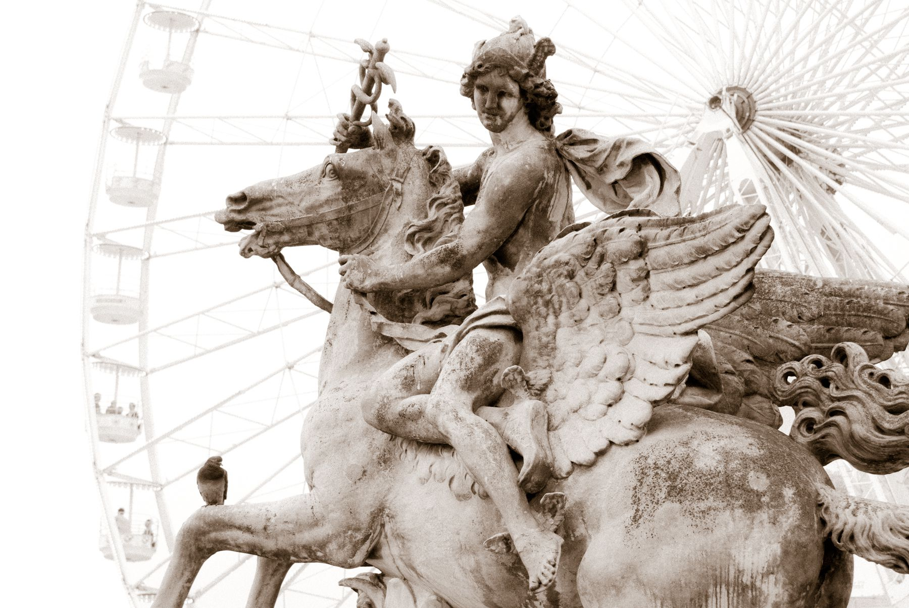 fast facts on the winged horse of greek mythology