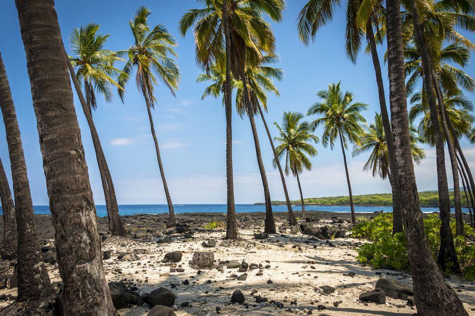 Hawaii Nude Beach Photo Gallery-6175