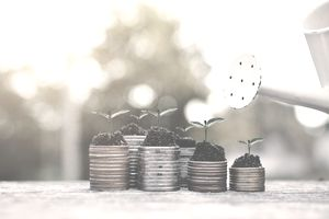 Watering Can By Saplings On Stack Of Coins