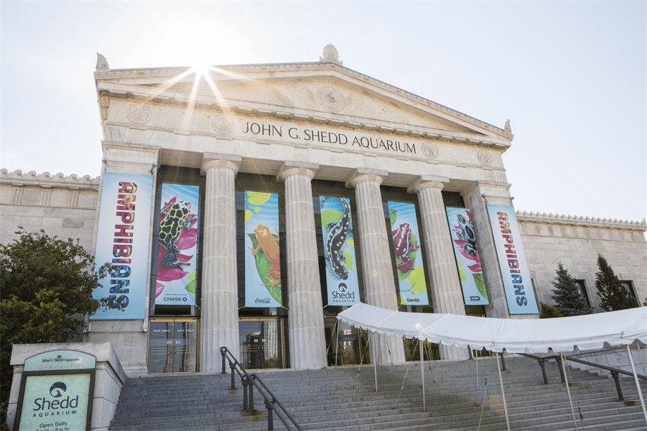 john g shedd aquarium in chicago entrance