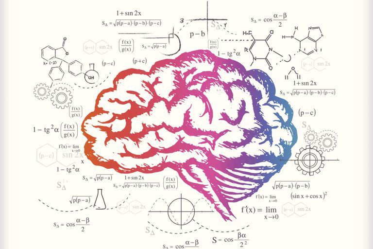 Brain and calculations (drawing)
