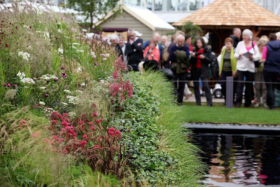 A guide to the rhs hampton court palace flower show - Hampton court flower show ...