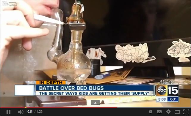Smoking Bed Bugs to Get High