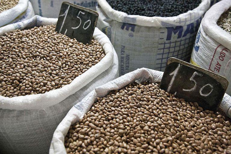 Sacks of coffee beans, Salvador, Bahia, Brazil