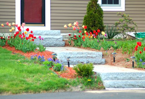 Photo of granite walkway with plants.