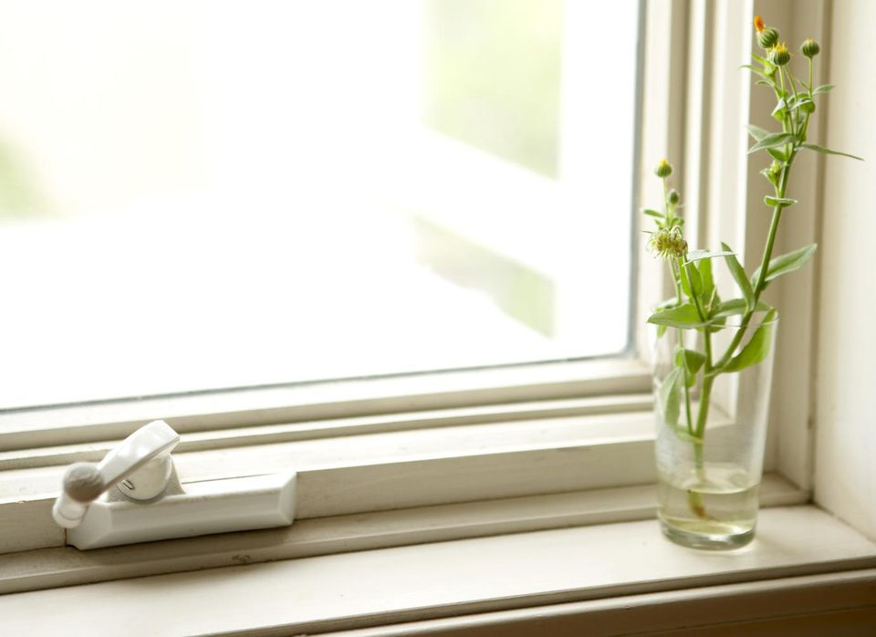 Small flowers in glass vase on windowsill