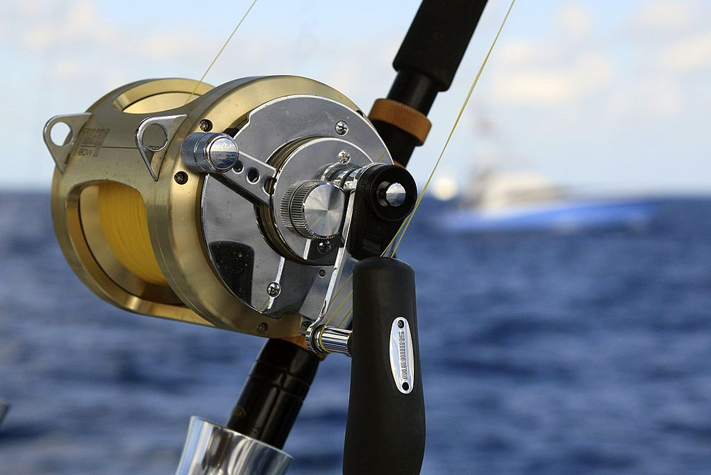 top 5 brands of saltwater reels ForHow To Reel In A Fish