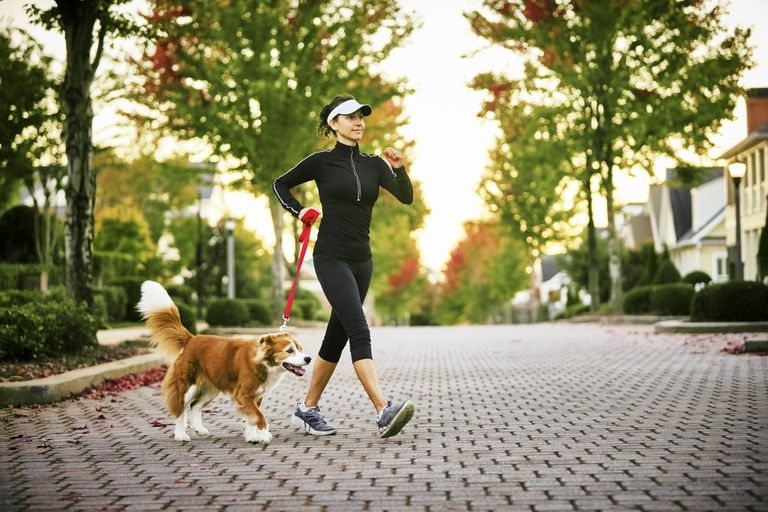 Brisk Walking with Your Dog