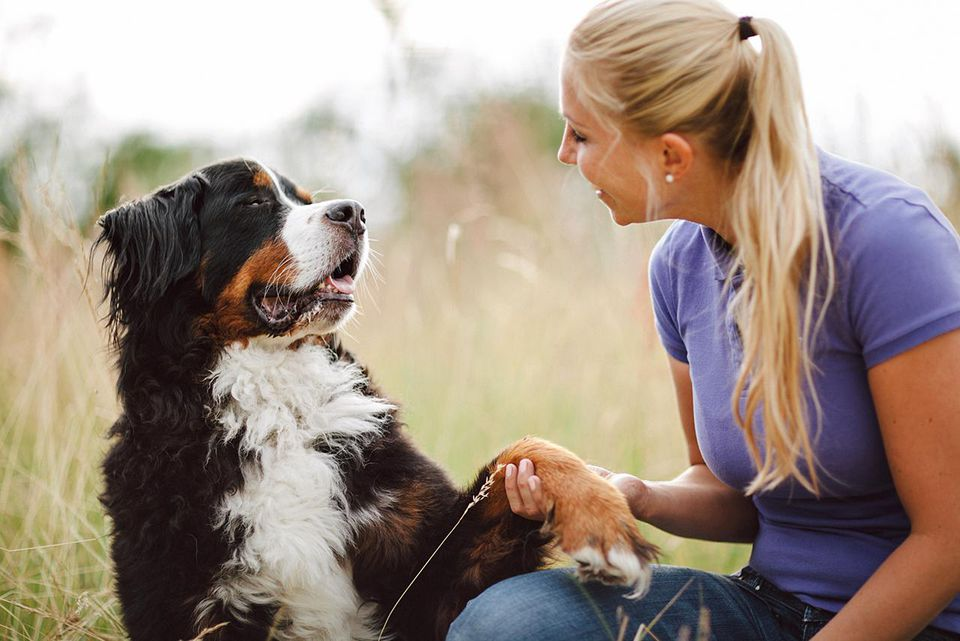 Dog shaking his paw to its owner, a blond haired woman.