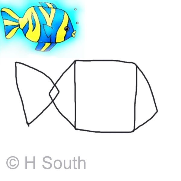 drawing a tropical fish