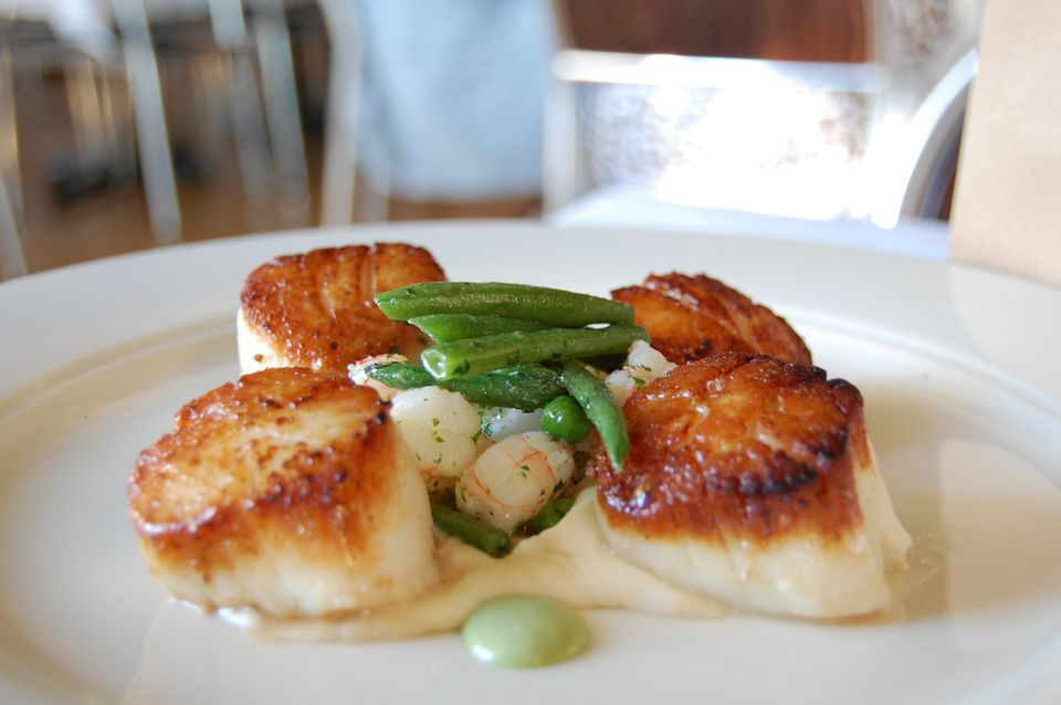 seared scallops dish