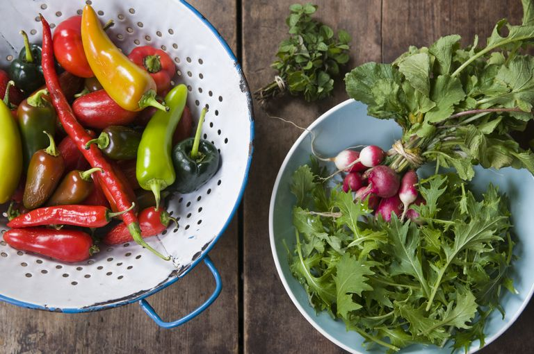 Vegetables Harvested From an Urban Farm