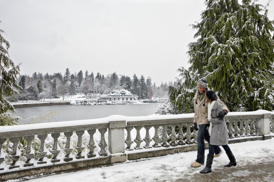 Couple walking in snow covered urban park