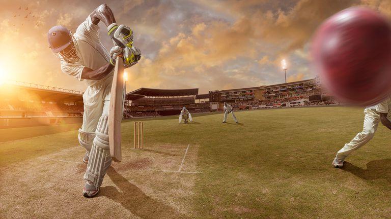 Cricket Action