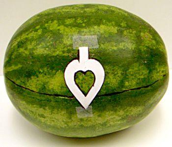 Place stencil on watermelon.