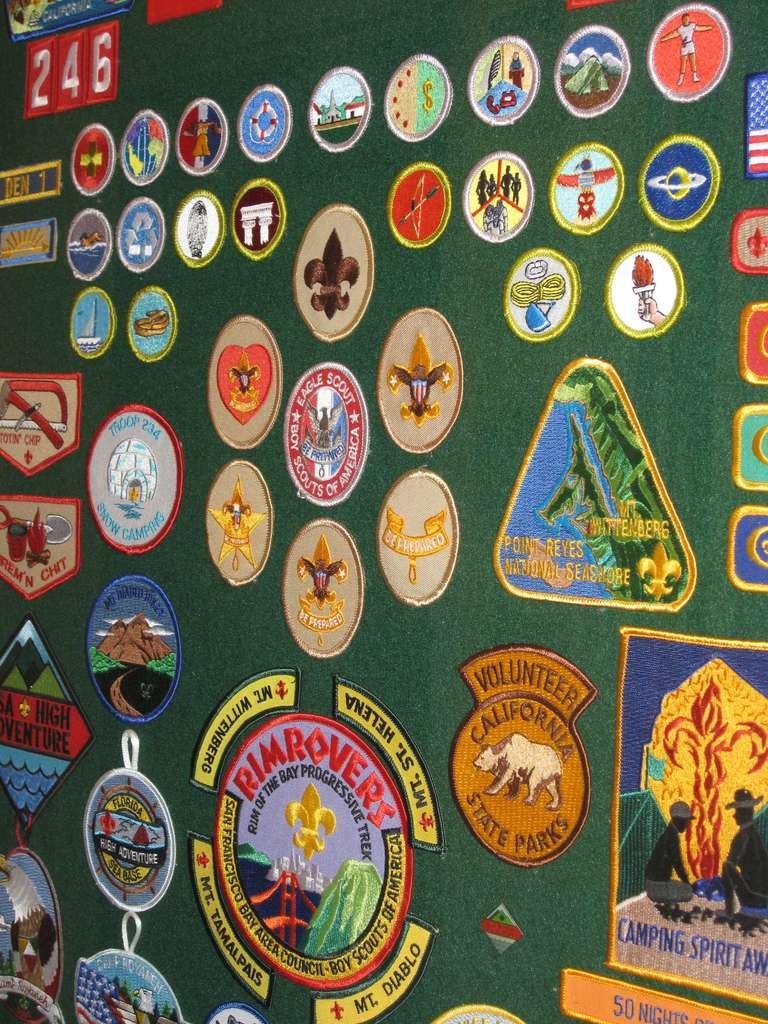 worksheet Wilderness Survival Merit Badge Worksheet tips to make boy scout merit badges easier photo by jackie burrell