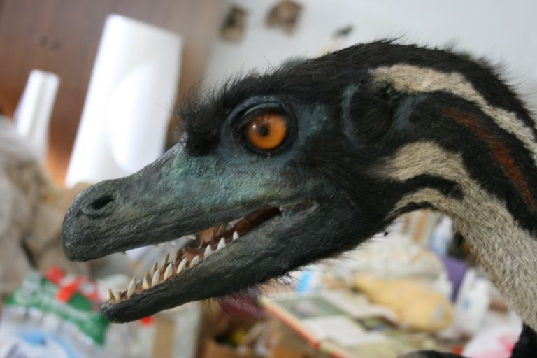 I got Velociraptor. What Kind of Dinosaur Are You?