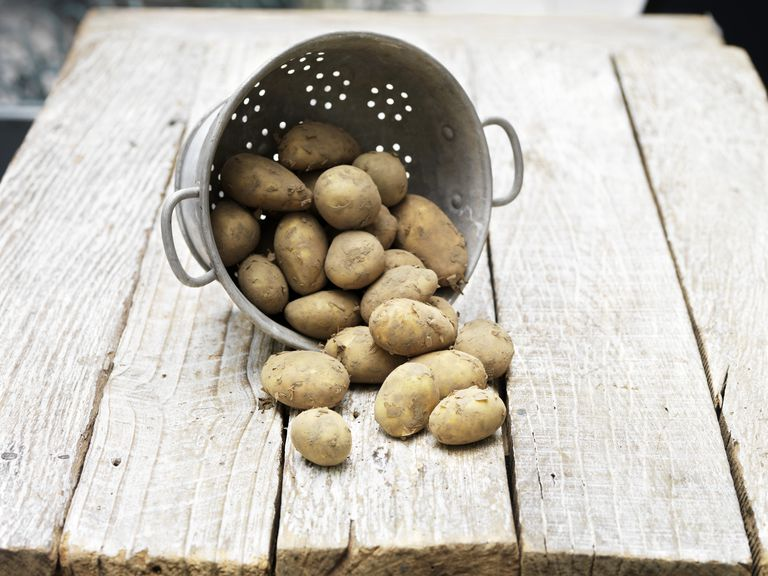 Potatoes in a tipped over colander on a wooden table