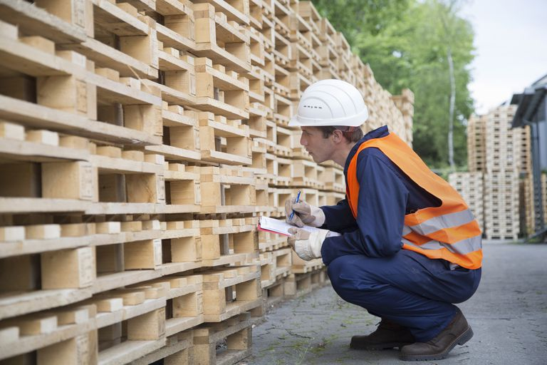 Young male worker pallet stock taking in timber yard