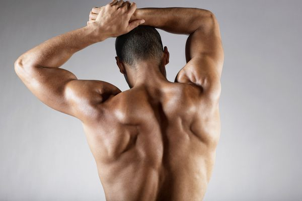 Face Pulls Shoulder Rear Delt Exercise