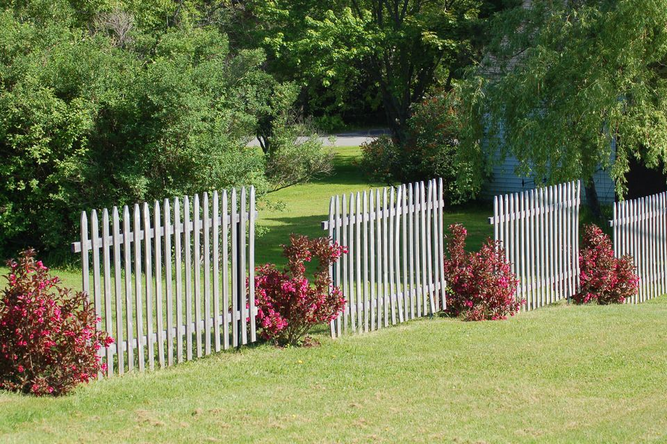 A fence can be broken up with shrubs, as this picture indicates.