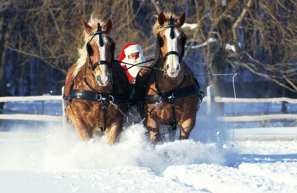 'Santa Claus' driving sleigh
